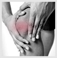 miniscus_Glenhuntly Road Health Clinic_Physio Clinic South East Melbourne_